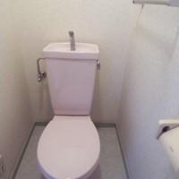 1.パッと見綺麗なトイレなのに…
