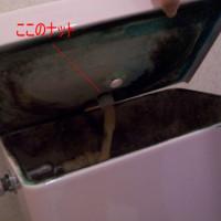 2.中はカオス。手洗い金具の裏側のナットを外す。手で回ります。