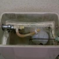 17.なるべくタンクの中に汚れを落とさないようにこすってはバケツでスポンジを洗う。